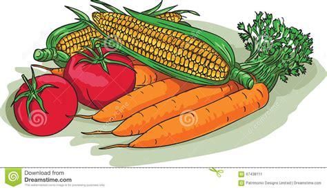 vegetable garden drawing vegetable garden crop harvest drawing stock vector image