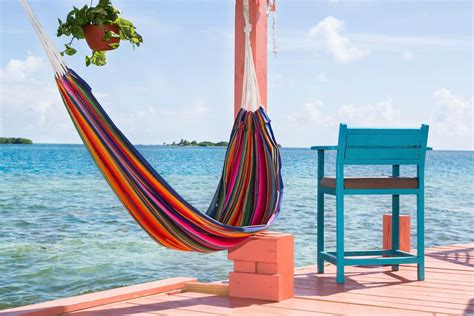 bird island placencia bird island placencia belize islands for rent in