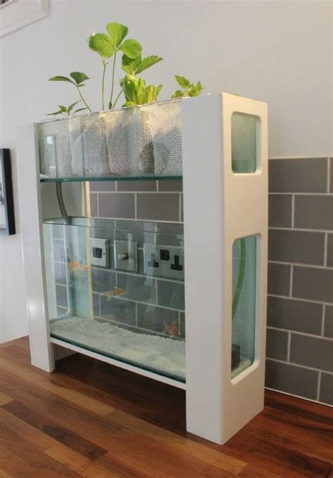 Apartment Setup Ideas how to grow vegetables year round with indoor aquaponics