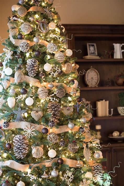 tree outside decorations 25 unique trees ideas on