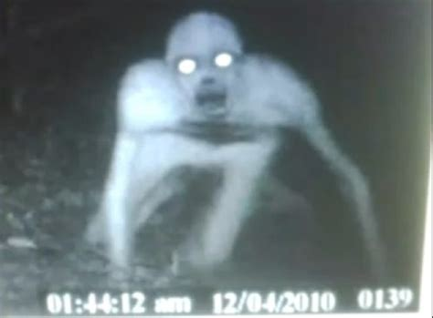 Varmint Hunting Lights by The Rake Mythical Scary Creature Unexplained Mysteries