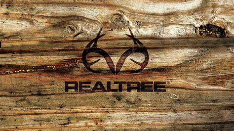 real tree for realtree catalogs realtree