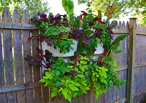 garden wall planter vertical garden planters are easy to install in shade