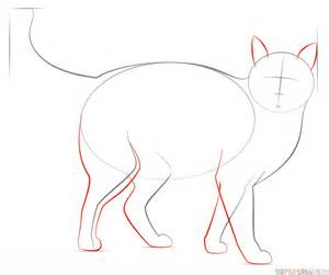 cat step by step how to draw a cat draw a realistic cat step 8