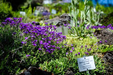 Der Garten Wien by Der Botanische Garten Wien Eine Oase Inmitten Der Stadt