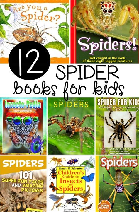 spider picture books 12 spider books for the letters of literacy