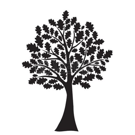 black and white tree oak tree black white clipart