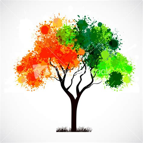 tree color in royalty free stock images vectors illustrations