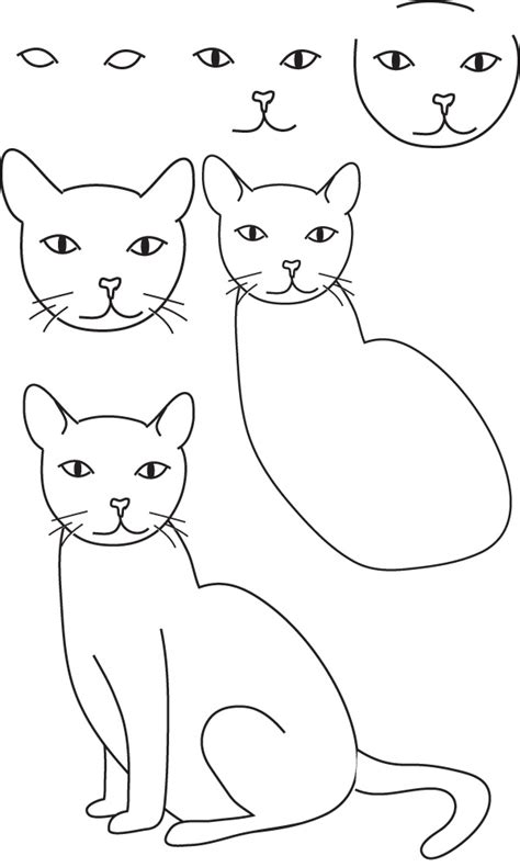 cat step by step drawing cat