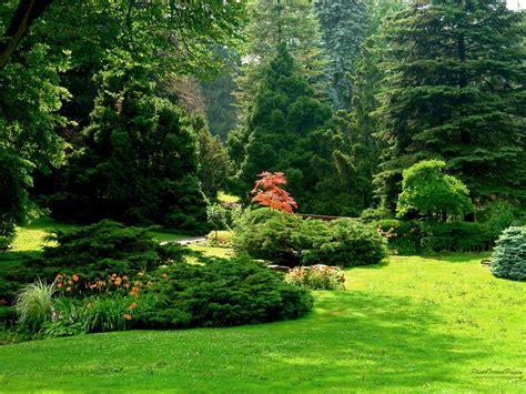 photos of gardens where is wallpaper garden hd