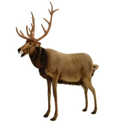 animated reindeers images of reindeers new calendar template site