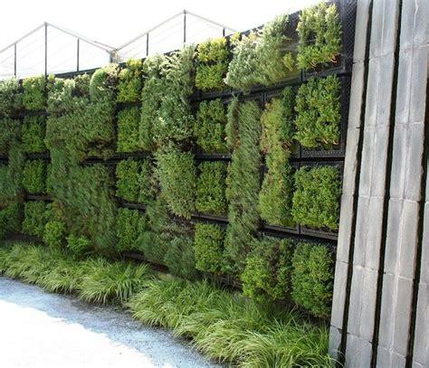 herb wall garden herb wall diy home garden