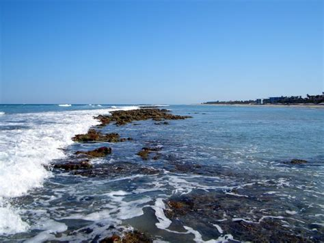 bathtub reef at low tide picture of stuart florida tripadvisor