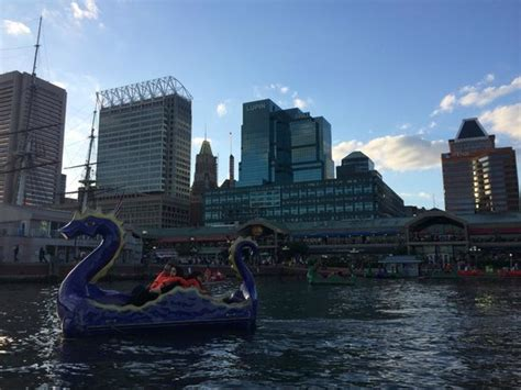 Pedal Boat Baltimore by Popular Attractions In Baltimore Tripadvisor