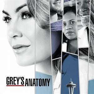 Grey's Anatomy - Stagione 14