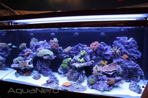 the sea max s 650 is one big beefy aio aquarium aquanerd