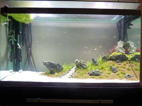 aquascape avec un aquarium osaka 320 page 2
