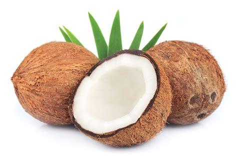 la noix de coco en polyn 233 sie arts et voyages