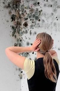 Gesunde Luftfeuchtigkeit In Räumen : tipps zur verhinderung von schimmelbildung optimale luftfeuchtigkeit ~ Markanthonyermac.com Haus und Dekorationen