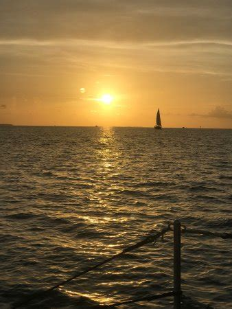 Catamaran Echo Key West Florida by Catamaran Echo Key West Fl Arvostelut Tripadvisor