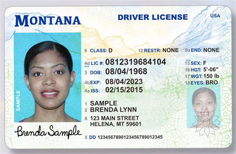 colorado dmv non resident form all 51 driver license designs ranked worst to best