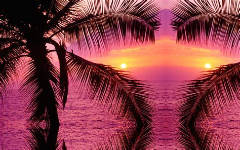 Tropical Background Images