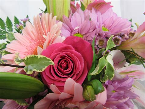 """""""pink To The Max"""" Cut Flowers  Sudbury Flower Delivery L. Non Potable Water Signs. Starbound Signs Of Stroke. Rate Signs Of Stroke. Attack Signs. Amylin Signs. Acute Stress Signs. Safety Checklist Signs Of Stroke. H2o Signs"""