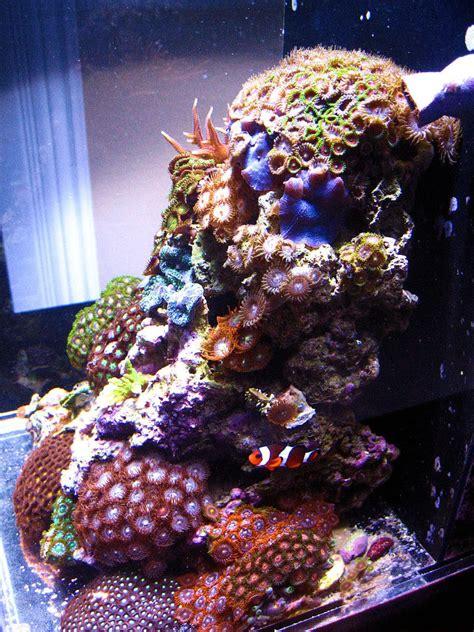 aquarium tank led grow light aquarium