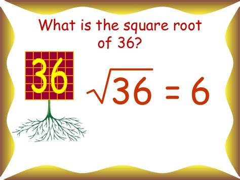 Square And Square Roots