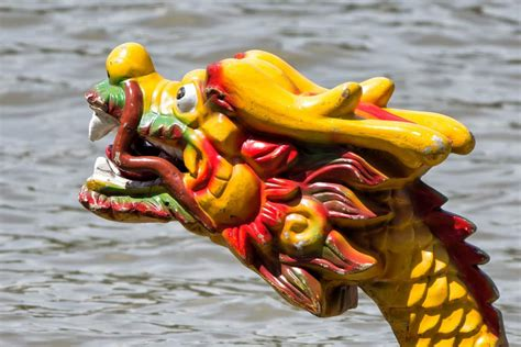 Kamloops Dragon Boat Festival 2019 by Dragon Boat Festival 2019 Dates Gardens By The Bay Race