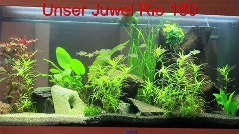 180 liter aquarium juwel