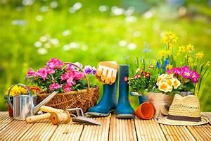 Garten Blumen Pflanzen : blumen pflanzen wann wohin und welche ~ Markanthonyermac.com Haus und Dekorationen