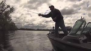 Fish Ed. - Shallow Water Bluegills - YouTube