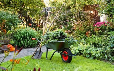 The Best Benefit Of Gardening? Improving Our Mental Health