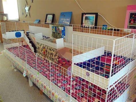 1000 id 233 es sur le th 232 me cage 192 lapin sur lapin de compagnie clapier lapin et lapins