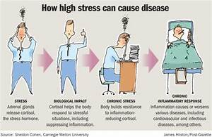Manage stress, or it will tax your health | Health and ...