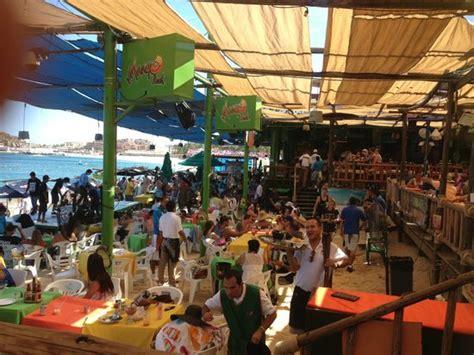 mahi mahi three ways picture of mango deck restaurant