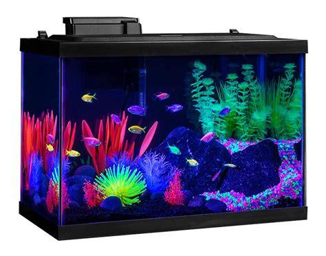 aquarium tank kit 20 gallon glow fish neon color starter led decor home office ebay