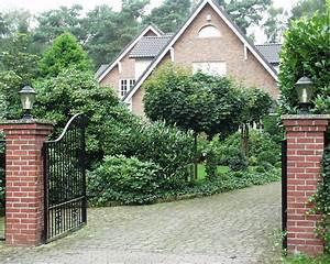 Schnellwachsende Sträucher Als Sichtschutz : immergr ne geh lze kraut r ben ~ Markanthonyermac.com Haus und Dekorationen