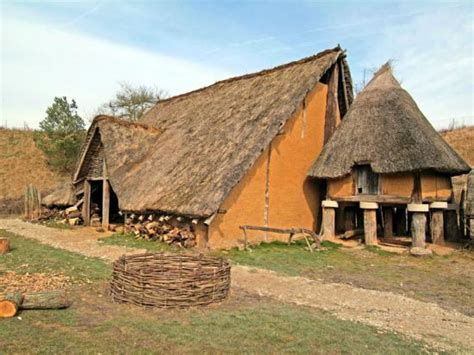 l abita de l homme prehistorique