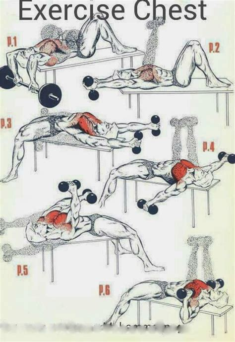 at home chest exercises tracis webpage