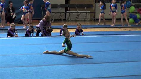 s gymnastics level 4 gymnastics state meet chion