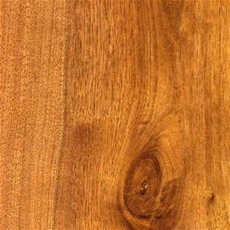 wilsonart laminate floor colors best laminate flooring ideas