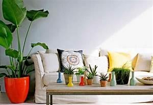 Große Zimmerpflanzen Pflegeleicht : gro e zimmerpflanzen die wenig licht brauchen zimmerpflanzen die wenig licht brauchen ~ Markanthonyermac.com Haus und Dekorationen