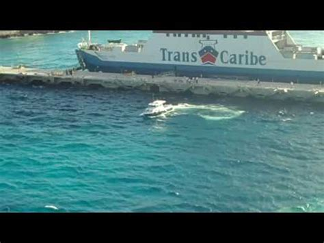 carnival paradise cruise ship sinking real footage vidoemo emotional unity