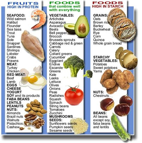 types of food my fridge