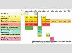 Alterações à vacinação a partir de janeiro de 2017