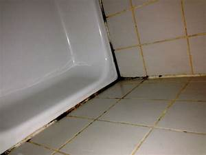 Hausmittel Gegen Schimmel In Der Dusche : schimmel im bad die richtige schimmelbeseitigung zum schimmel entfernen ~ Markanthonyermac.com Haus und Dekorationen
