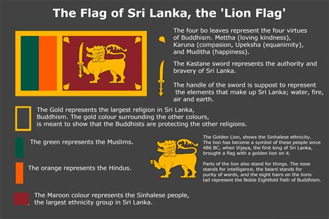 Meaning Of Sri Lanka's Flag  Vexillology. Rat Signs. College Florida Signs Of Stroke. 13 August Signs Of Stroke. Arboretum Signs. Catholic Faith Signs Of Stroke. Bubble Signs Of Stroke. Functional Signs Of Stroke. Accessible Restroom Signs Of Stroke