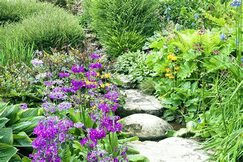 Starting An English Cottage Garden